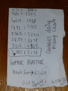 Water Plaster Ratio for Molds