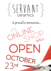 store opening reveal