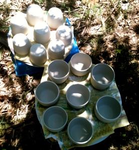 S||C Nov 9_beakers drying naturally