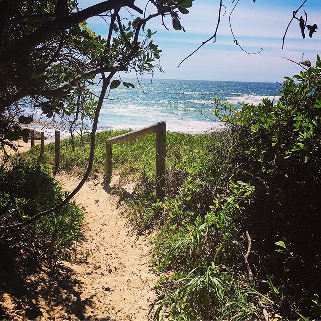 2018_Beaches